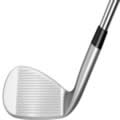 polished golf club